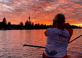 Pinkfarbener Himmel über der alten Donau
